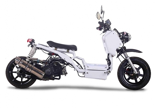 Ice Bear Maddog 150cc and 50cc